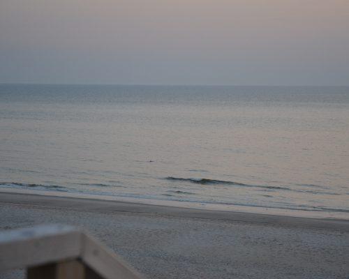 Die Welle ist das Meer